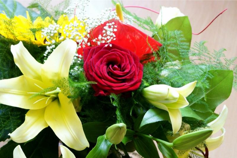 flowers-1693732_1920 [800x600]